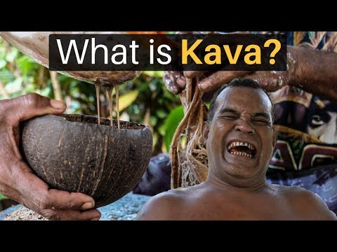What Is KAVA? (This Drink Is INSANE)