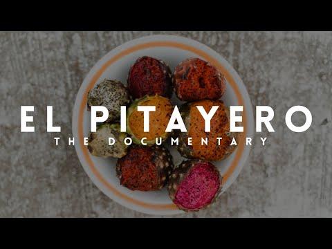 EL PITAYERO | DOCUMENTARY