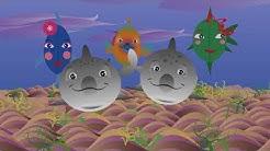 Mimmit - Delfiini