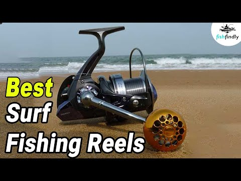 Best Surf Fishing Reels On The Beach – Top Suggestions In 2020