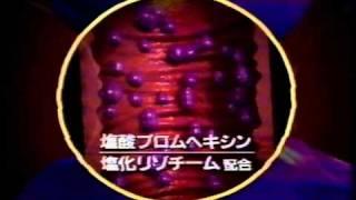 大正製薬 パブロンSゴールド よろしくね新しいパブロン 三田佳子 2006年.