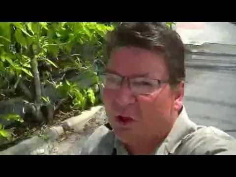 Joko in Thailand 11: Apartment Hunting