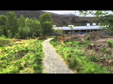 Norsk film, hemmeli nemmeli