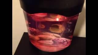 OFKP® Novelty LED Artificial Jellyfish Aquarium Lighting Fish Tank Night Light Lamp Reviews