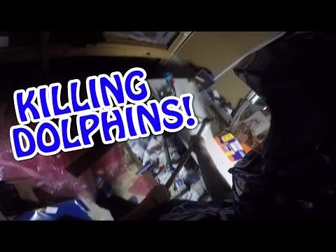 DONT CALL PETA!   Dolphin Killer   RIP my Life