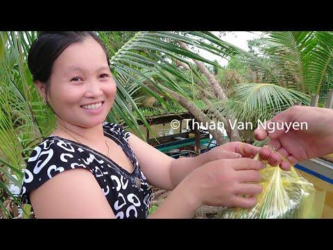 Vietnam || Rural Life In An Bien District || Kien Giang Province