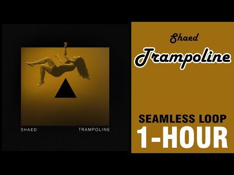 Shaed - Trampoline (seamless 1 Hour Loop)