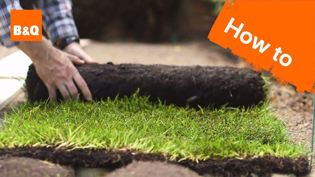 How To Lay A New Lawn From Turf Youtube