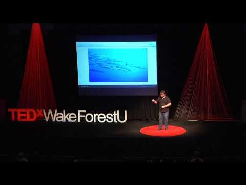 Data hacking - data science for entrepreneurs | Kevin Novak | TEDxWakeForestU