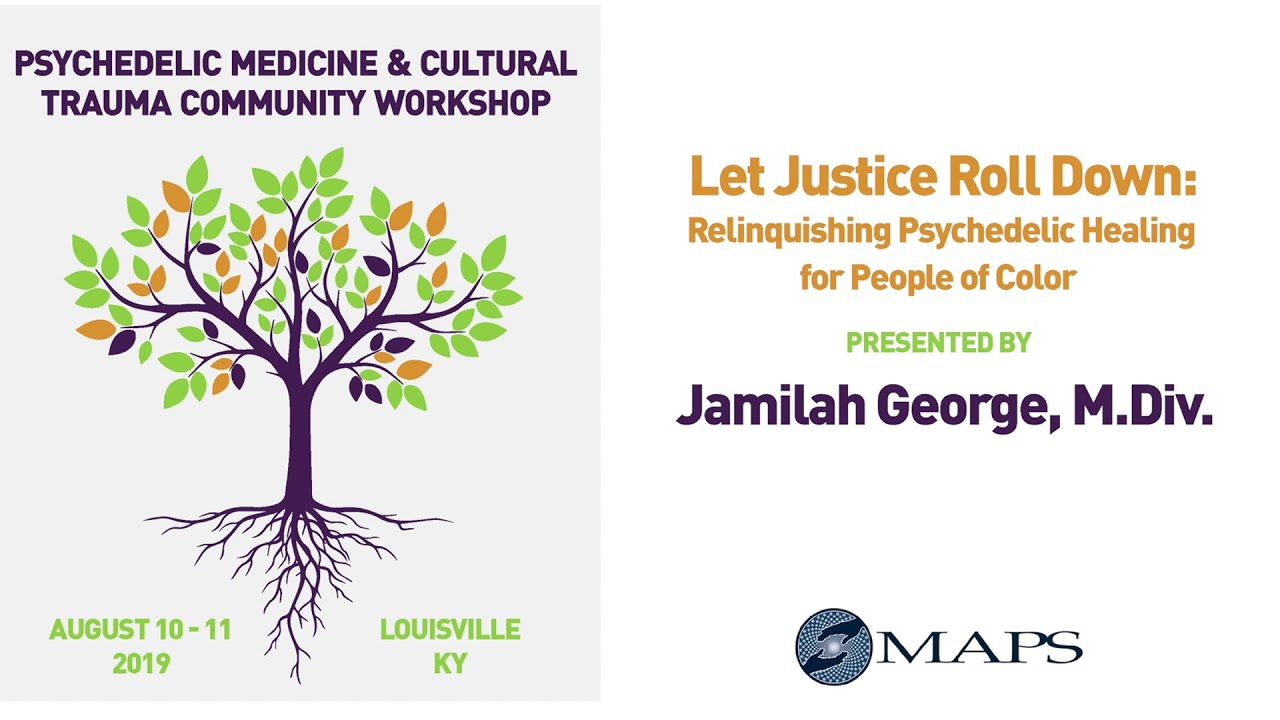 Let Justice Roll Down: Relinquishing Psychedelic Healing for People of Color - Jamilah R. George