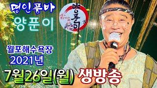 ^양푼이품바 ^7월26일(월) 월포실시간 공연
