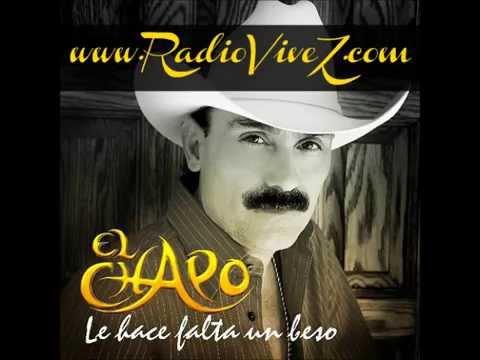 Radio ViveZ