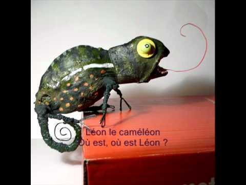 Leon le cameleon_0001.wmv