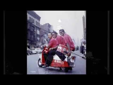 Bo Diddley  ~  ''Elephant Man''   1970 mp3