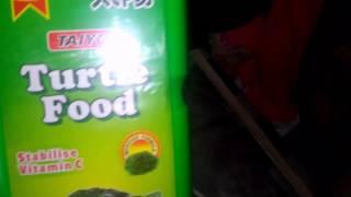Turtle food for pet turtles