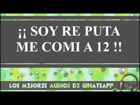 SOY RE PUTA ME COMI A 12 - Los mejores audios y videos de whatsapp