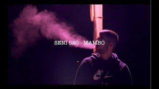 SENI 520 - MAMBO