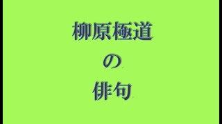 柳原 極堂(やなぎはら きょくどう) 慶応3年2月11日(1867年3月16日)-...