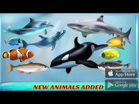 Transport Truck Sea Animals