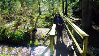 Askew Creek Wilderness Park (ep. 7) Wonderful Walks