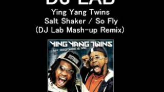 Ying Yang Twins - Salt Shaker (DJ Lab Mash-up Remix)
