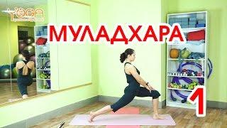 1. Муладхара. Блок асан в положении стоя. Серия обучающих фильмов по хатха йоге