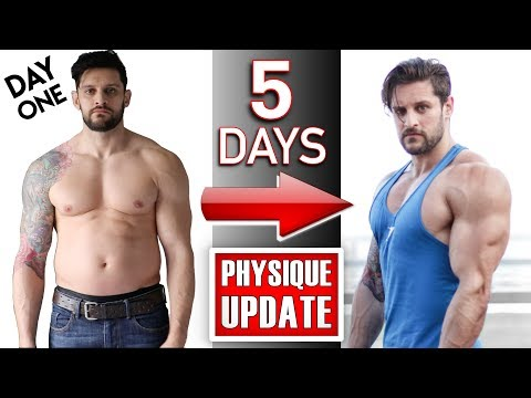 7 DAY BODY TRANSFORMATION CHALLENGE | 5 DAYS: Physique Update + How To GAIN SIZE (Lex Fitness)