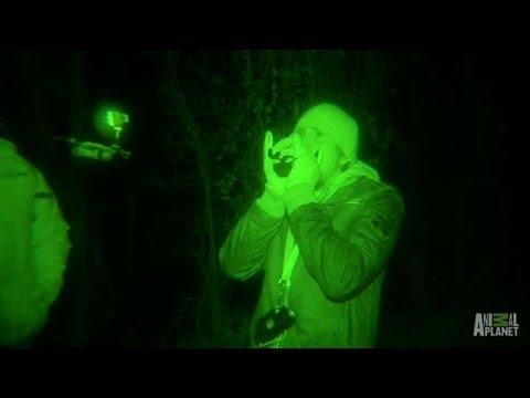 Squatch Calls In Boggy Creek Return Creepy Response | Finding Bigfoot