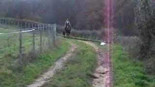 Lolie saut 1