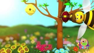 """النحلة """"بدون إيقاع"""" - قناة بيبي الفضائية"""