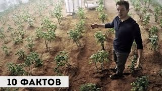 10 ФАКТОВ О ФИЛЬМЕ МАРСИАНИН (2015) + ИНТЕРАКТИВ