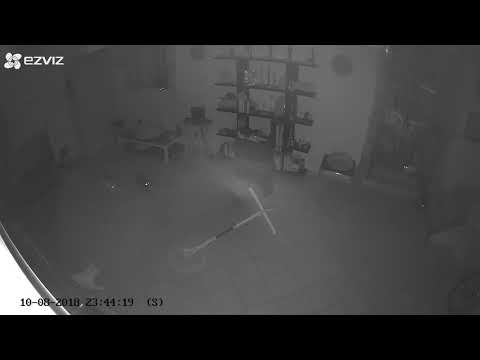 Joey Nolan similar case but in Italy; DOOMED CAT in a GHOST house. Any explanation?