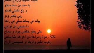 Cheikh Amer Ezzahi 5