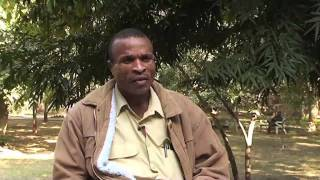 Small-scale Organic Farming in Zimbabwe and its Challenges