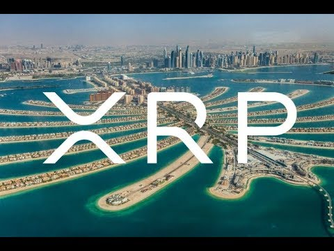 Follow The Oil And Dilip Rao Ripple XRP Holders