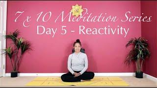 7 x 10 Meditation Series - Day 5 - Reactivity