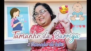 Tamanho da Barriga x Tamanho do Bebê - Patricia Amorim