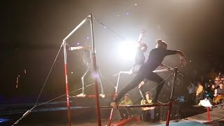 Искусство гимнастики (Art of Gymnastics) [Гимнастика → Разное]