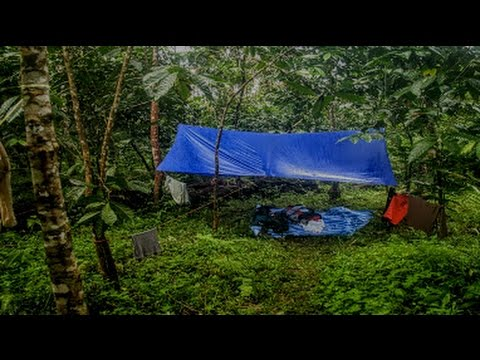 3 HOURS RAIN ON A TENT ☆ Sound Therapy ☆ Deep Sleep and Relaxation with Sounds of Nature