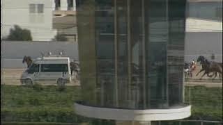 Vidéo de la course PMU CRITERIUM D'HIVERN