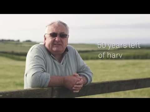 Triodos Bank Head Heart Day - Sheepdrove Organic Farm