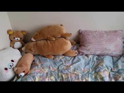 My Dorm room in Japan + some Kpop/Jpop CDs