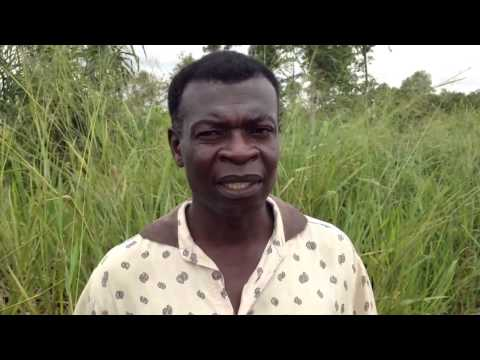 Kokou Joseph Adokanou from Zio River Valley in S. Togo talks about his SRI experience
