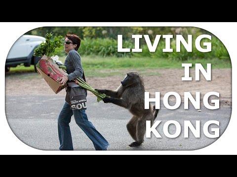 CHASING SUCCESS IN HONGKONG | Living and working in Hongkong