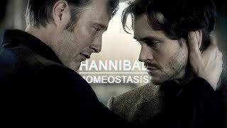 Hannibal || Homeostasis