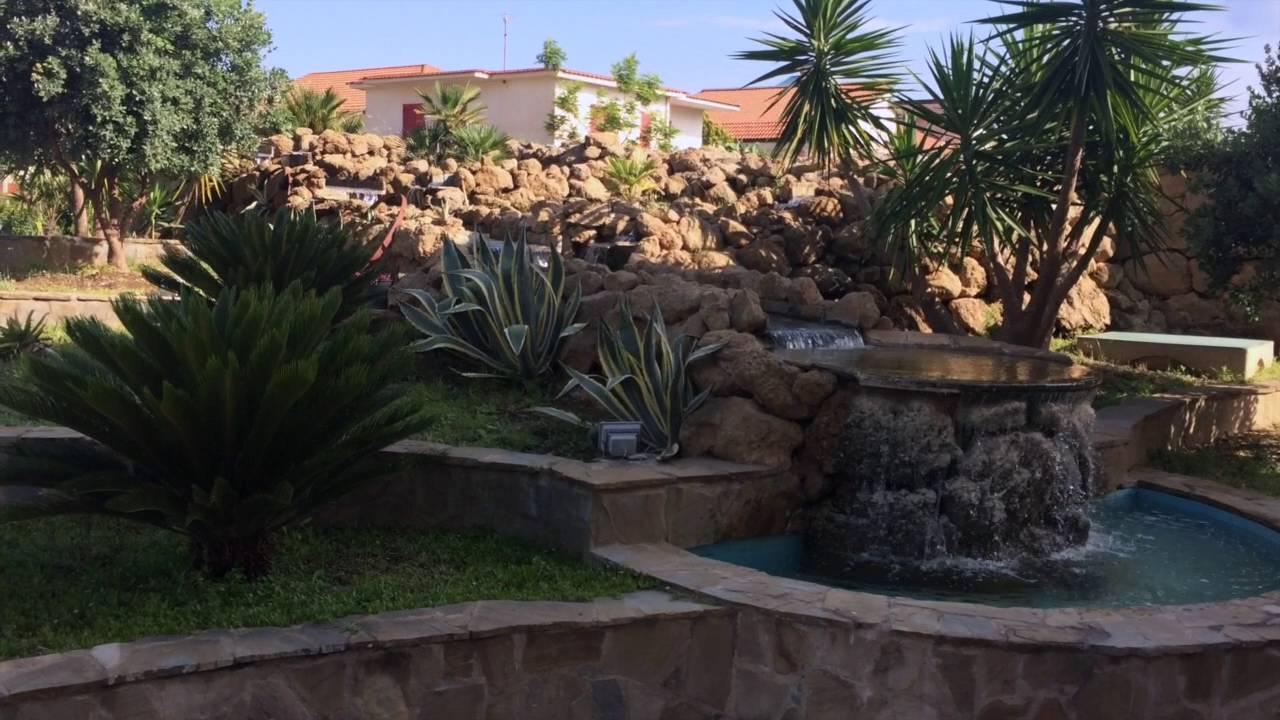 Giardino piante grasse youtube for Piante di giardino
