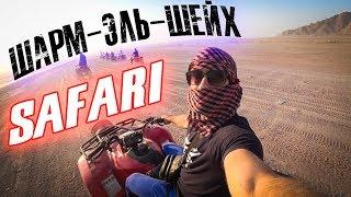 Сафари на квадроциклах! Шарм Эль Шейх 2019 !