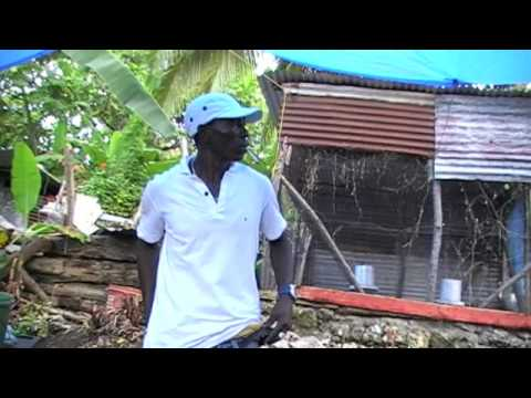 a cook we a cook,inna snow hill portland jamaica,a snow hill the thing set.part4