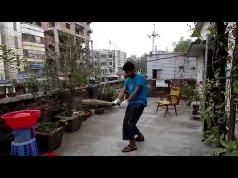 My trip to Bangladesh - Part 2