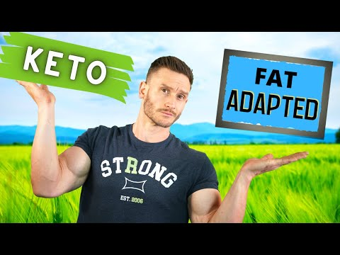 Ketosis vs Fat Adapted - What is the Difference?